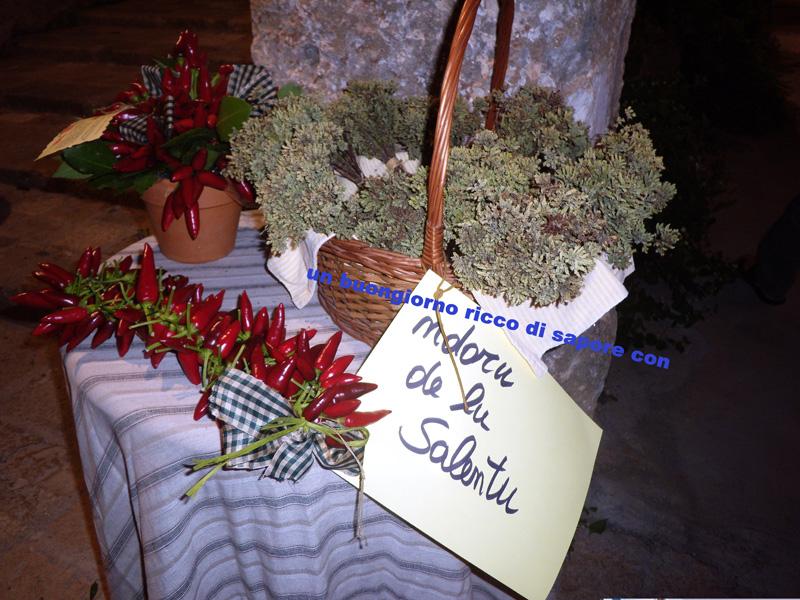 maria rosaria vasquez giuliano