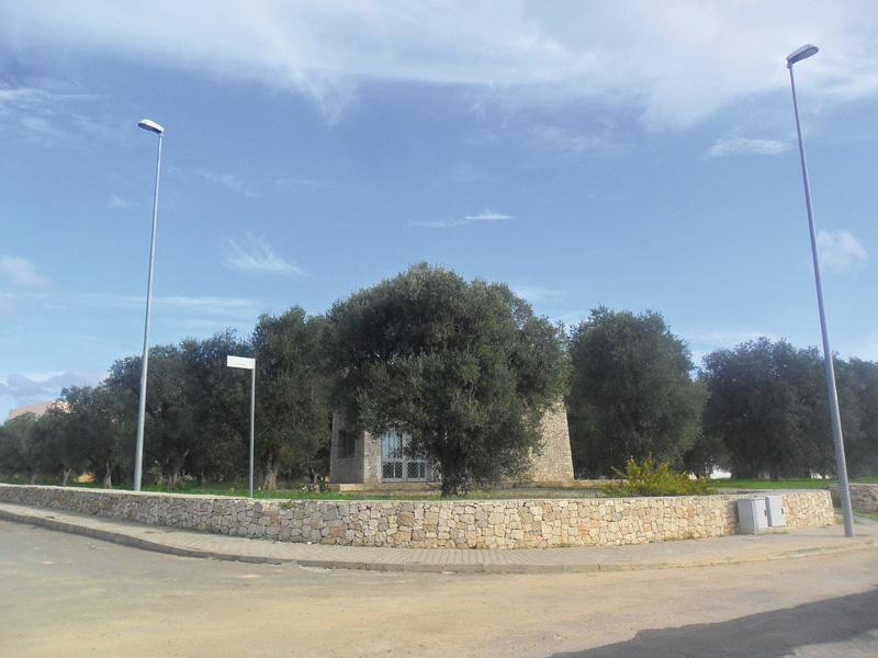parco degli ulivi 2013 sannicola (2)