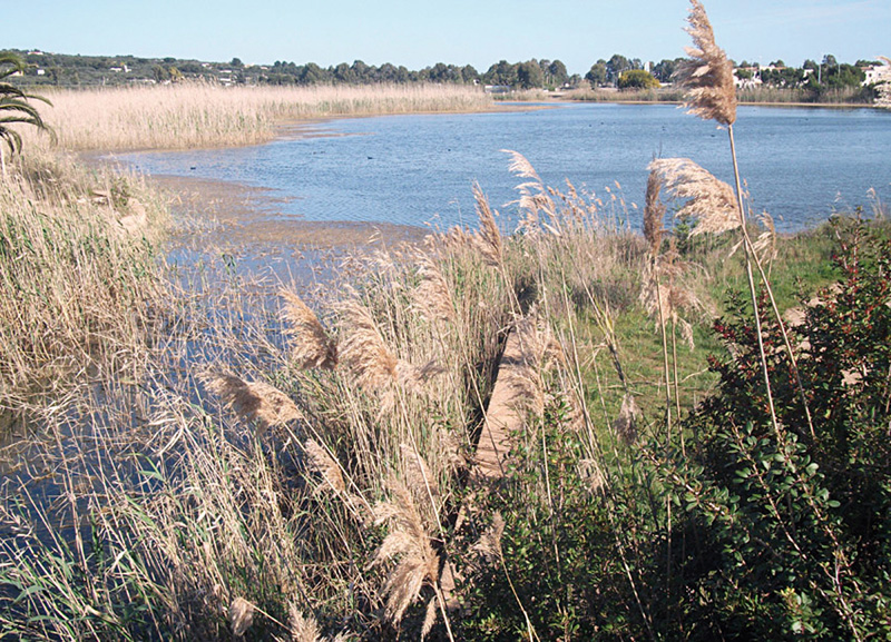Parco Litorale di Ugento