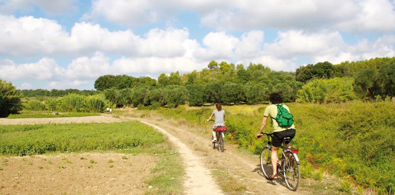 salento bici tour CASARANO (1)