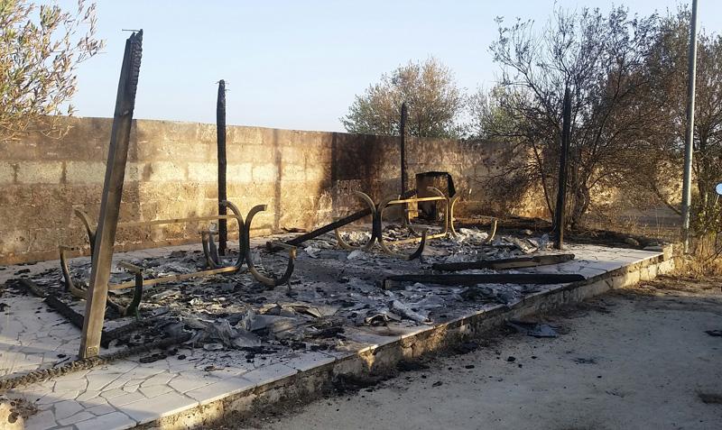parco bruciato settembre 2015  (2)