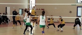 volley melissano
